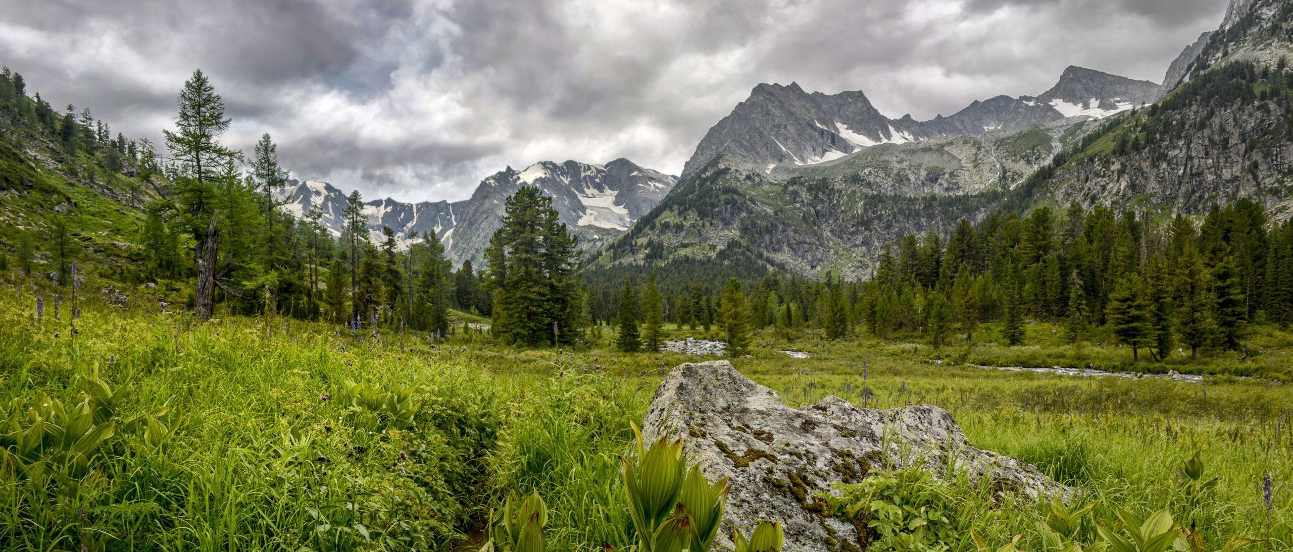 Панорама гор Алтая